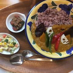 野菜カレー/ヘルシー/わたしのごはん 美味しかったヘルシーご飯