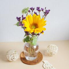 雨季ウキフォト投稿キャンペーン/令和元年フォト投稿キャンペーン/お花/ひまわり/向日葵/花が好き/... お花に癒されます^^