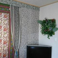 みんなにオススメ/グリーンウォール/壁面アレンジ 和室をバリモダン風に改装中✨100均フェ…(2枚目)