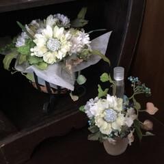 癒しの空間/緑色/お洒落キッチン/香水瓶/造花アレンジ/お花/... キッチンにある飾り棚の香水瓶置き場。淡い…(1枚目)