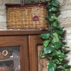 棚の上/天井/癒しの空間/ブラウンインテリア/グリーン/キッチン収納/... 食器棚の上の空間は、ピクニック籠(収納可…