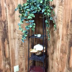 造花アレンジ/緑のある暮らし/部屋/少なくする/おしゃれな部屋/飾り棚/... レンガ調のキッチンから繋がる隣部屋は木目…
