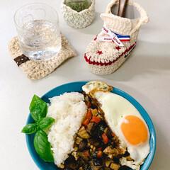 手編み 秋茄子でガパオライス