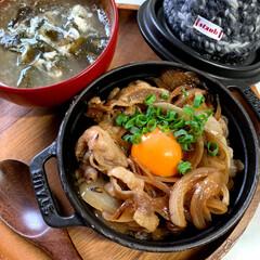 手編み/ストウブ鍋/おうちごはん/ハンドメイド 0.5合炊飯 生姜焼き丼(1枚目)