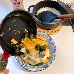 ストウブ鍋 やぐらねぎで衣笠丼(1枚目)