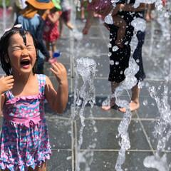 水遊び/噴水/夏の日/公園/おでかけワンショット 暑い夏の日、近くの公園でおもいっきり水遊…