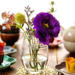 bloomeelife/ルクルーゼ/ティータイム/スイーツ/チューリップローズ/花好きな人と繋がりたい/... 公式アンバサダーを務めさせていただいてい…
