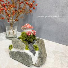 ガーデン雑貨/ガーデニング/鉢/石造り/南天/ナンテンの実/... きのこ🍄のピック付き 石造りの鉢を作成✨…