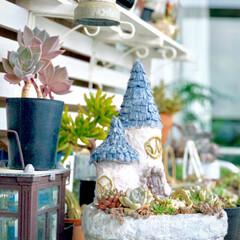 モルタルデコ/モルタル造形/とんがり屋根/植物のある暮らし/植物/多肉植物のある暮らし/... 朝晩が涼しくなって いよいよ多肉植物が …