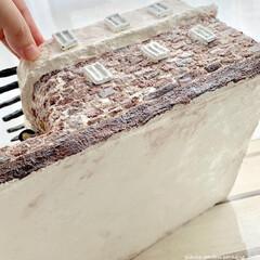 ハンドメイド作家/レンガの家/プロストラーツス/多肉植物/モルタル雑貨/おうち雑貨/... モルタルの鉢カバーを作りました! リゾー…(4枚目)