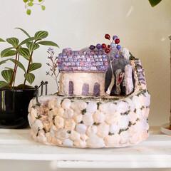 YouTubeチャンネルあります/YouTube/plantsgardenparadise/プランツガーデンパラダイス/大人可愛い/ファンタジー/... モルタルハウス鉢を作りました(^^) 今…