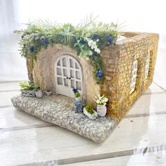 植物のある暮らし/モルタルハウス/モルタルデコ/プランツガーデンパラダイス/plantsgardenparadise/モルタル鉢/... あめ色レンガの鉢カバー 完成しました😆💕…