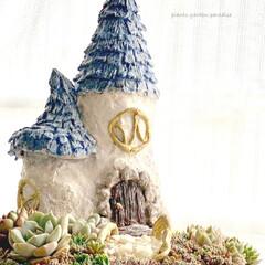 ミンネ/minne/ミンネで販売中/plantsgardenparadise/プランツガーデンパラダイス/白牡丹/... 少し前に作った とんがり屋根のおうち 多…