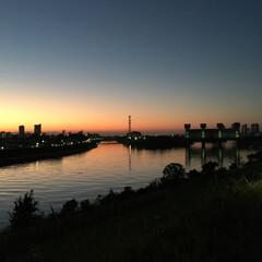 東京/河川/夕暮れ/おでかけワンショット ランニング中の一枚。 何気なく通る道も気…