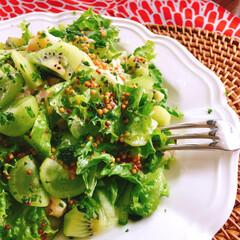 サラダ/オーガニック野菜/有機栽培/無農薬/オーガニック/家庭菜園/... 😋おうちごはん 〜♬  とりあえす 野菜…