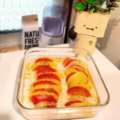 セール品 iwaki パック&レンジ システムセット・ミニ グリーン 1セット AGCテクノグラス 新生活 | AGCテクノグラス(食品保存容器)を使ったクチコミ「もう何年も使っているiwakiの耐熱ガラ…」