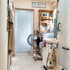室内用 ホスクリーン 標準サイズ SPC-W-P 川口技研(室内物干し)を使ったクチコミ「洗濯機の扉が閉じないように、また、洗濯ネ…」(1枚目)