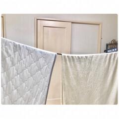 梅雨の洗濯/ホスクリーン/洗濯/洗濯ロープ/ハンガーロープ/セリア/... ホスクリーンに掛けた室内干し用のバーと、…