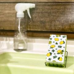 キュキュット CLEAR泡スプレー無香 本体 300ml | 花王(液体洗剤)を使ったクチコミ「ダイソーで買った、新しいキッチンスポンジ…」