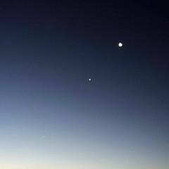 ブルー 2019・1月1日  明け方のブルーのコ…