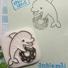 海の生き物/イルカ/アッチマイ/消しゴムはんこ作家/消しゴムはんこ/minne/... acchimaiの消しゴムはんこ屋さん …