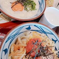 うどん/おでかけ 丸亀製麺の明太クリームと明太チーズ釜玉う…
