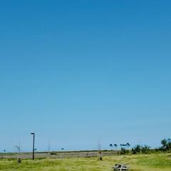 外出/おでかけ/リフレッシュ/空/公園 公園に寄った時の1枚😉 暑い1日でした☀️(1枚目)
