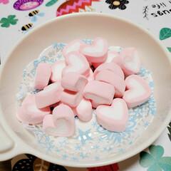 マシュマロ/お菓子/ひな祭り/ピンク/キャンドゥ/100均 Can★Doでみつけた  ハート型のマシ…