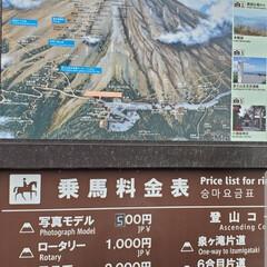 旅行 8月4日は、富士山🗻五号目と甲府のハーブ…(3枚目)