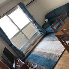 ここが好き/ソファとカーペット 引越した我が家は彼の好きなサーフ系で統一…