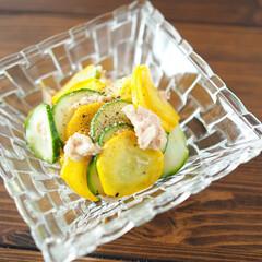 ズッキーニ/eatpick/アンバサダー/Panasonic/マリネ/ツナ/... ズッキーニのレモンマリネ  2色のズッキ…