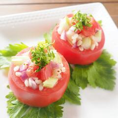 トマトカップ/トマト/野菜ソムリエ/簡単レシピ/セロリ トマトのカップサラダ  セロリを使ってさ…