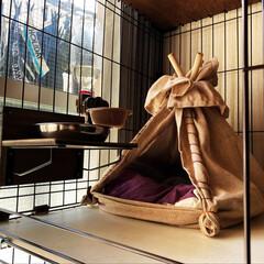 リビング/セリア/ハンドメイド/DIY/アンティーク/北欧 猫用テントの材料と ご飯台の材料は全てセ…(1枚目)