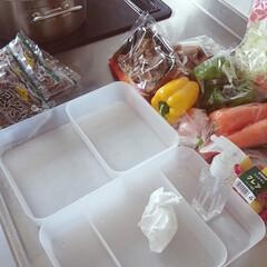 冷蔵庫/掃除/整理/収納/時間活用/除菌 野菜室に落ちている細かいカスが気になった…