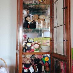 ぬいぐるみ/子供部屋/寝室/片付け/ぬいぐるみ収納 キャラクターごとに並べてあったり アニマ…(1枚目)