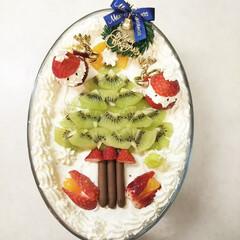 クリスマス/ケーキ/スコップケーキ/サンタ/いちご/キウイ/... 長男と私の誕生日&クリスマスのケーキを作…