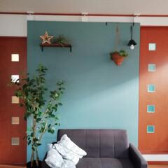 ラブリコ 2X4アジャスター オフホワイト DXO-1 LABRICO   平安伸銅工業(棚受け)を使ったクチコミ「ラブリコとベニヤで作った壁に棚とアイアン…」