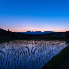夕焼け/トワイライト/田園/おでかけワンショット トワイライト  きれいな夕焼けでした。 …