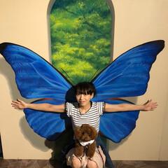 ブルー 鮮やかなブルーの蝶に変身〜🦋 (トリック…