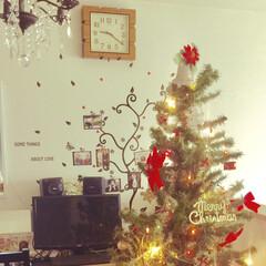 ダイニング/写真/クリスマス/ダイソー/セリア/100均/...