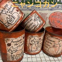 ビンクルルビー/ガーデン/リメイク缶/リメイク鉢/リメ缶/ツメレンゲ/... リメイク缶、リメイク鉢出来上がりました😄…