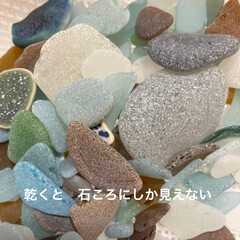 シーグラス/サクラ貝/海 イチゴミルク???みえないか😅  サクラ…(4枚目)