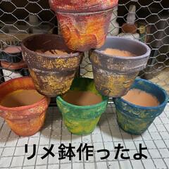 ガーデン/パウダーブルー/リメ缶/リメイク鉢/多肉植物 リエールさん苗植えるため リメ鉢作りまし…