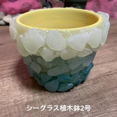 シーグラスアクセサリー/海/シーグラス 連投スミマセン  シーグラスで また、鉢…