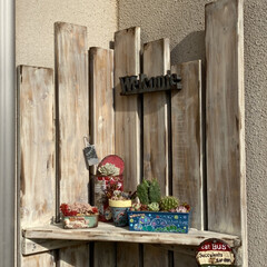 多肉植物寄せ植え/多肉植物/多肉/多肉棚/植物棚/コーナーラック/... 玄関脇のコーナーに 多肉棚を作りました。…(2枚目)