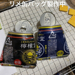ガーデンピック/リメ缶バッグ/リメ缶/リメ鉢/多肉/多肉植物/... 以前tomomoさんからもらった ガーデ…(3枚目)