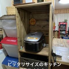 猫/炊飯器/キッチン収納棚/棚/セリア/DIY キッチンに棚を作りました💪  茶色、赤、…