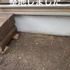 シーグラス/多肉植物/多肉植物寄せ植え/花壇作り/花壇DIY 今日は 小さな花壇作り! 先ずは ser…(6枚目)