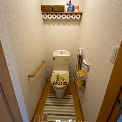リフォーム/トイレ/棚/トイレに棚/流木/ベアブリック こちらは 1階のトイレ! 以前2階のトイ…