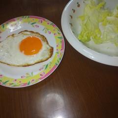 朝食/目玉焼き/レタス/我が家のテーブル 朝の食卓。朝は必ず目玉焼きとレタスが食卓…